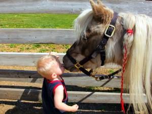 ребенок и пони